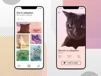 Cat Adoption App