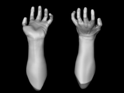 3d hand study