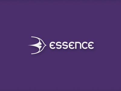 Essence Airline