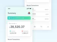 Financial Account Summary