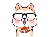 Shiba holing a crab
