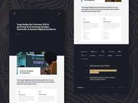 A Facelift for Vega web design website product design vega digital products studio ux agency