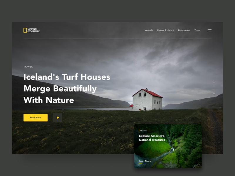 National Geographic Website Redesign wild animal redesign nature travel wildlife national geographic typography webdesign figma web website ux ui design simple
