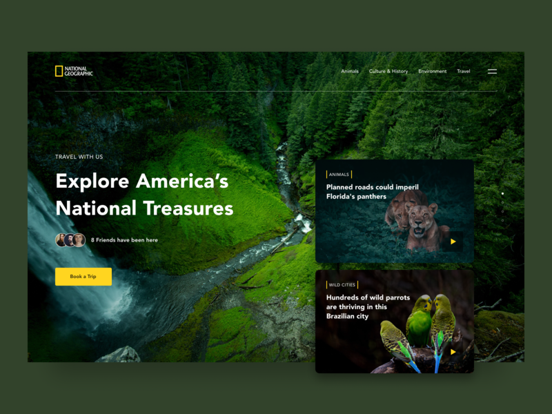 National Geographic Website Redesign cuberto history culture trip book travel nature national geographic wildlife wild animal webdesign website web ux ui design simple