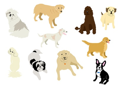 Dogs illustration dogs illustrator place cards