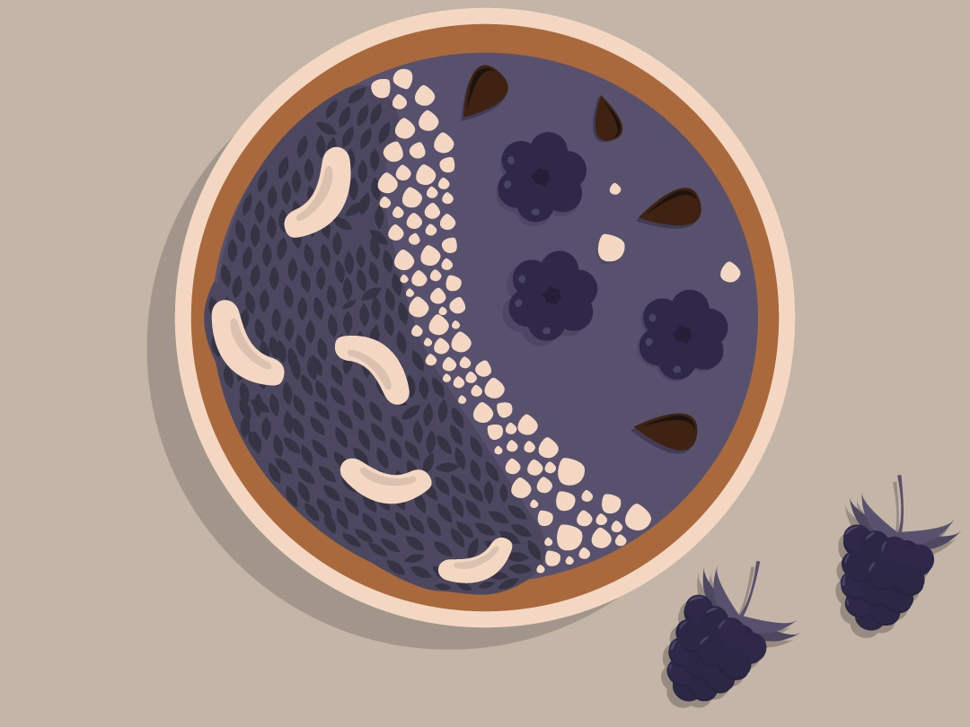 Smoothie illustration nuts berries breakfast food illustration food design art vector illustration