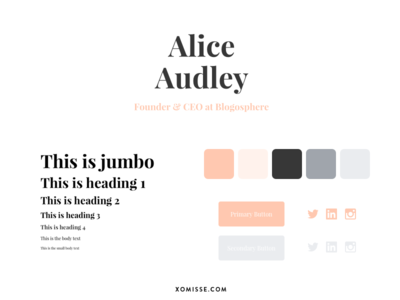 Design System style guide brand guidelines brand guide colour palette color pallete color palette design system typography identity branding graphic design design blog design web design