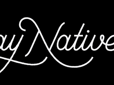 Sunday Natives prince brendan script cursive n s typography type lettering native sunday