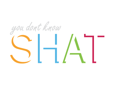 You Don't Know Shat! avatar brand concept personal brick shot