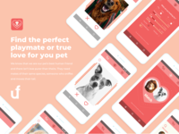 Tinpet - App