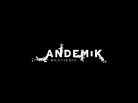 First search #2 for logotype Andemik
