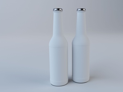 Beer Bottle Model