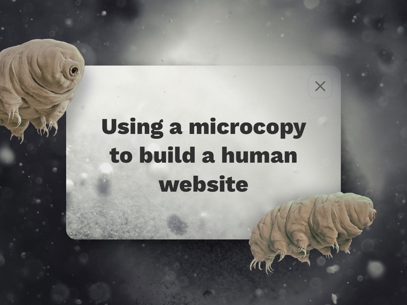 Using a Microcopy to Build a Human Website