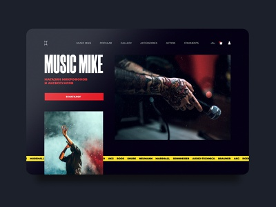 Music Mike / Microphones and accessories store desctop website webdesign ux site interaction design interaction web ui graphic design graphic design