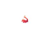 Logo I Client: SDC Tradicional dance