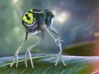 Alien Jungle Creature