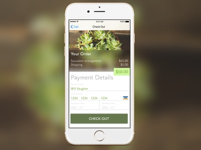 Daily UI 002 - Payment Page checkout ios mobile payments dailyui