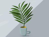 Palm #11