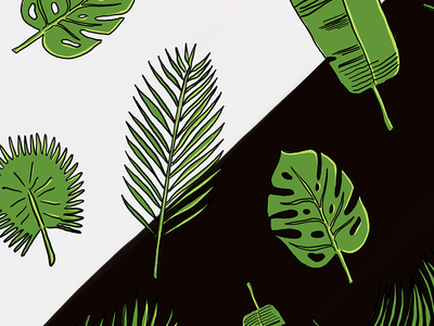 Palm Leaf Patterns drawing sketch plants green leaves palm leaves palm tree palm illustration