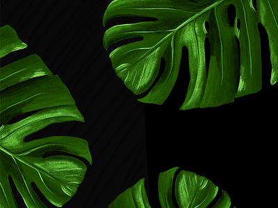 Palm Leaves leaf botanical green plant leaves palm leaves palm trees illustrator illustration
