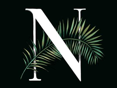 Palm Lettering organic nature leaf leaves palm leaves palm trees lettering typographic typography illustration