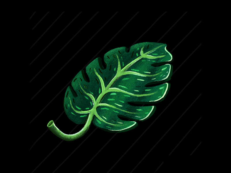 Floating Palm Leaf procreate illustrator floating palm tree palm leaves leaves palm leaf illustration