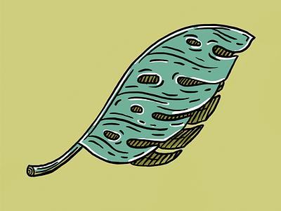 Senior Palm Leaf Edition lines organic nature green leaf plant palm tree palm leaf illustrator illustration