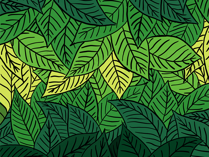 Lost in the Leaves jungle plant organic palm leaf palm leaves leaves procreate illustrator leaf palm tree illustration