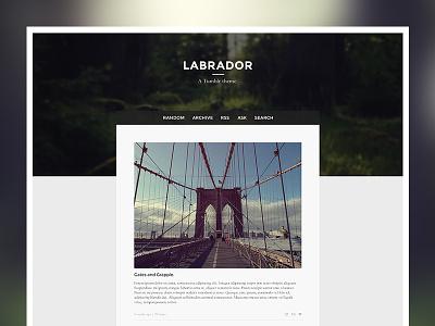 Labrador labrador tumblr theme vancouver web design ui ux