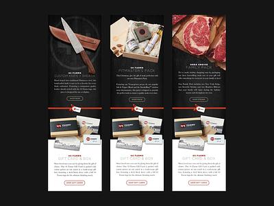 44 Farms Holiday E-Blast Graphics eblast newsletter email shop gift knife steak christmas holiday farms 44
