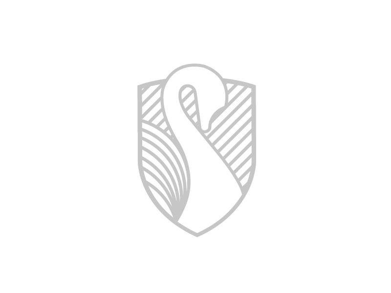 Logomark design corporate identity design illustrator logodesign logo