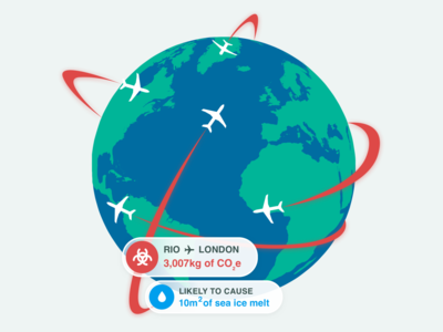 The climate impact of flights