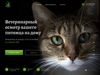 first screen of vet clinic landing page