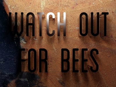 Watch Out For Bees type 3d