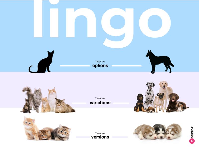 Lingo Dribbble process poster design freebie poster