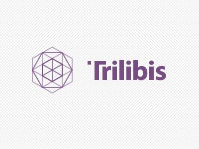 Trilibis Logo logo logotype pattern geometric tesselation