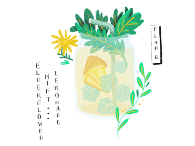 Elderflower Lemonade greens sunny mint elderflower lemonade drink