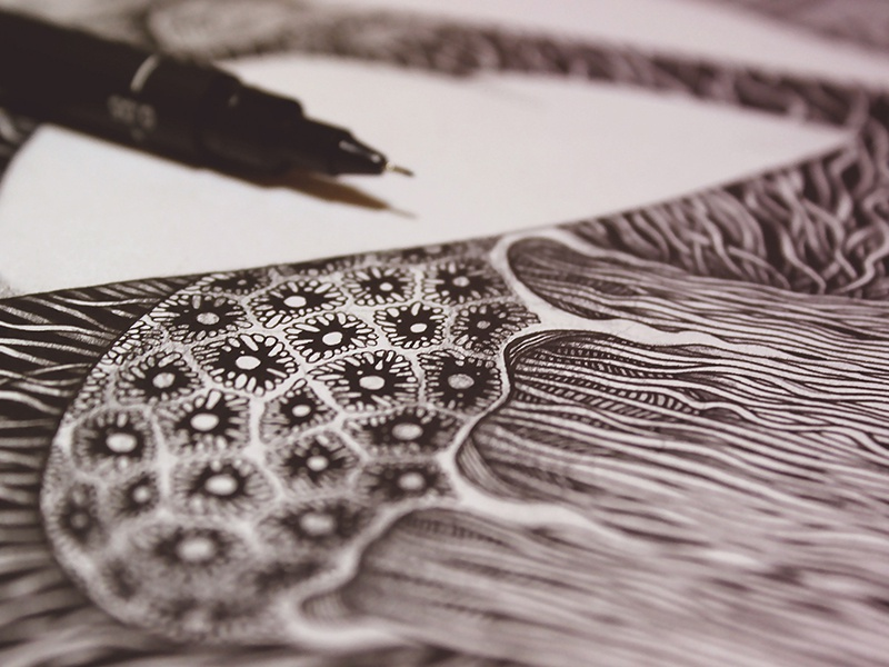 Engraved Memories - Detail ocean realistic details inking pencil drawing pencil illustration jelly fish illustration pencils ink drawing fineart