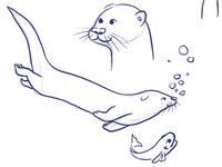 Otter session #1
