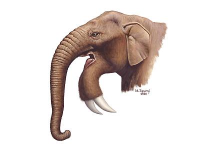 Deinotherium giganteum reconstruction illustration paleontology painting paleoart