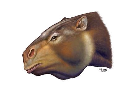 Megatherium americanum paleontology paleoart painting animal megatherium