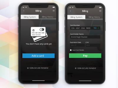 Payment Gateway Interface Concept