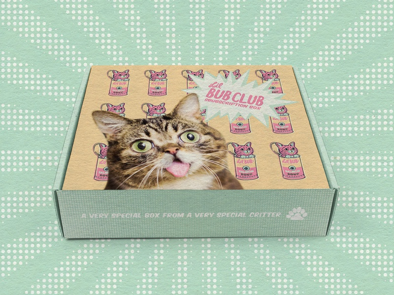 Lil Bub Pop Art Subscription Box pop art product design subscription box packaging vector cat limited color illustration design color