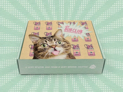 Lil Bub Pop Art Subscription Box pop art product design subscription box packaging vector cat limited color illustration design color
