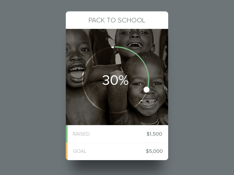 Project Widget widget fund charity goal graph