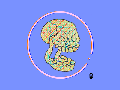 Texture  skull