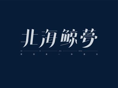 The North Water ui logo type design design