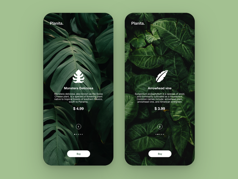 Planita - Plants buying app screen cart shopping plants ux mobile ui mobile app app vector ui graphic colors dribbble