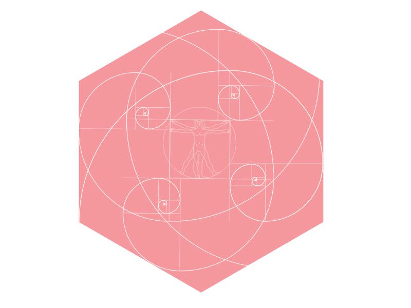Logo FIBONACCI datavis data dashboard complex analysis top design logo
