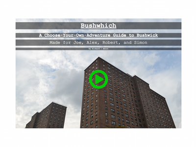 Bushwhich game website minimal photography background transparent